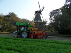 MH Multi planter- Bollenstreek
